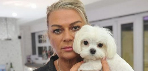 Dog owners boycott groomer who stripped 'traumatised' pedigree pooch of its fur