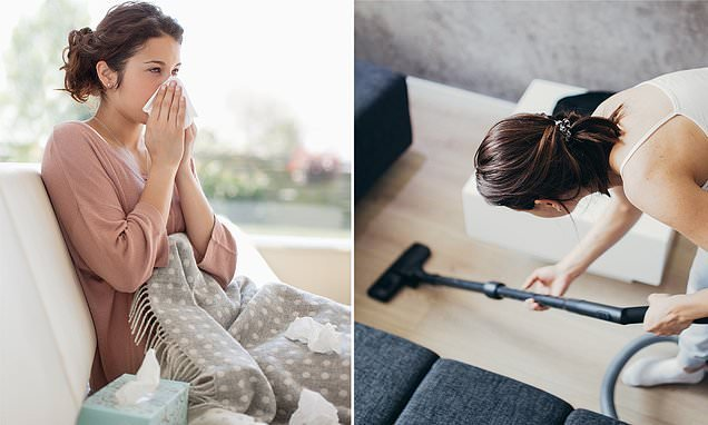 Revealed: Little-known allergy triggers lurking in your family home
