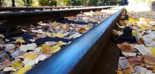 Rail delays caused by leaves on the line rocket by three quarters