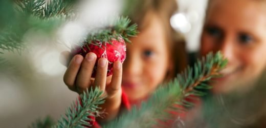 Warning Issued To Check Christmas Trees For Walnut-Sized Lumps