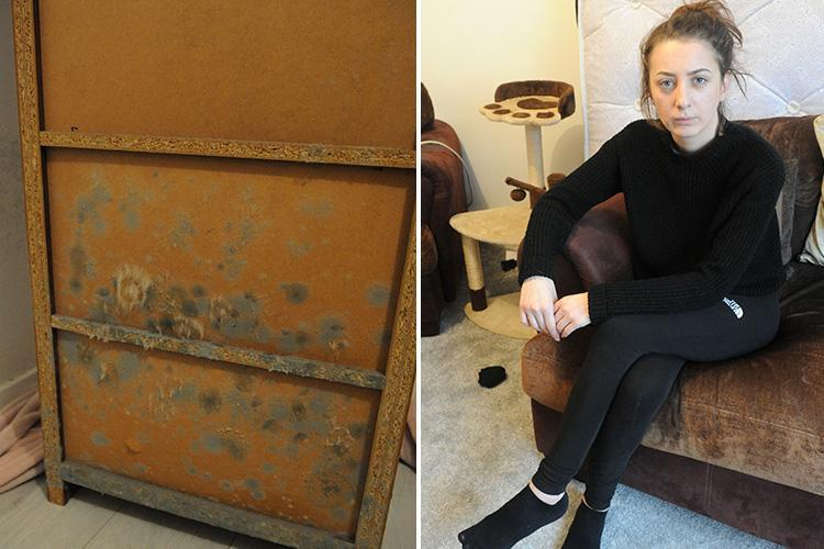 Woman forced to sleep in her living room as flat 'turns green' with mould