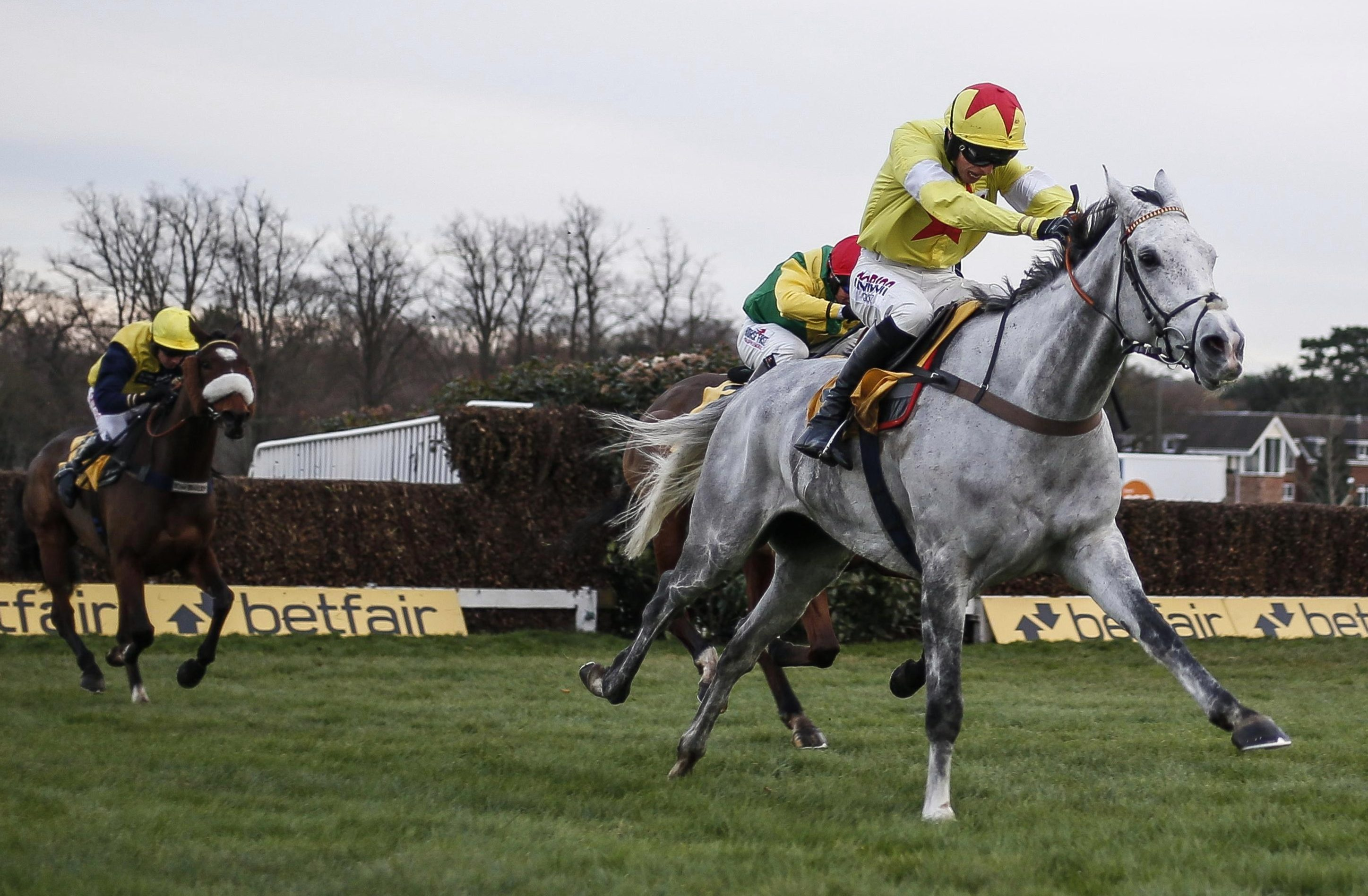 Charbel to sidestep Christmas fare with Kim Bailey favouring future targets