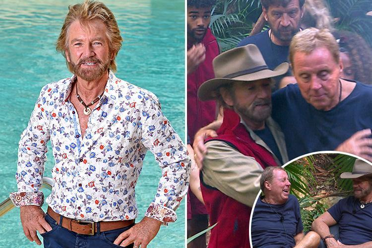 Noel Edmonds says he put a smile back on the face of jungle pal Harry Redknapp