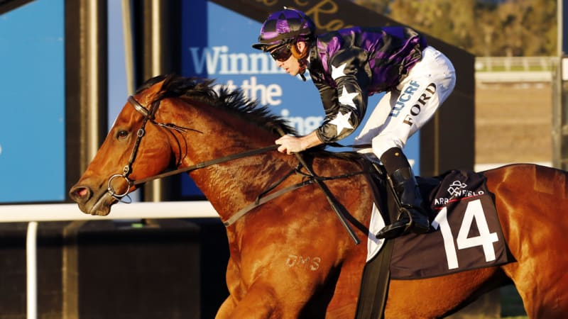 Race-by-race tips and preview for Scone on Tuesday