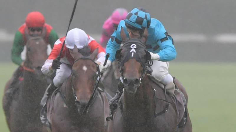 Race by race preview and tips for Gosford on Thursday