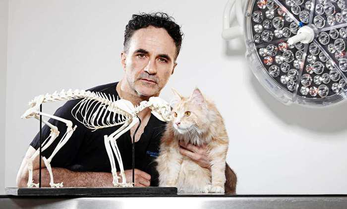 Who is Noel Fitzpatrick? Channel 4's Supervet star, owner of Fitzpatrick Referrals and vet