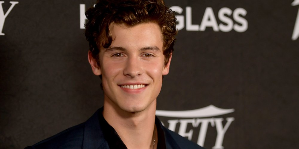 Shawn Mendes Opens Up About That Illusive Collaboration With Niall Horan