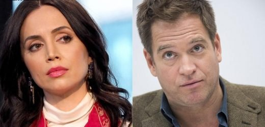 Eliza Dushku breaks silence on Michael Weatherly sexual harassment allegations
