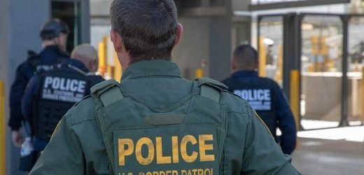 Guatemalan boy, 8, dies in US Border Patrol custody