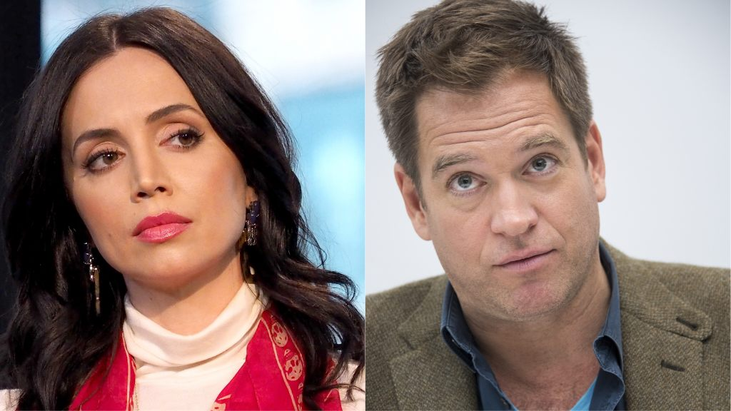 Eliza Dushku got secret $9.5 million settlement from CBS after accusing Michael Weatherly of sexual harassment: report