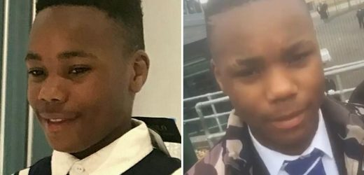 Cops beg for public's help to find killers who mowed down and knifed schoolboy, 14, to death in Lawless London