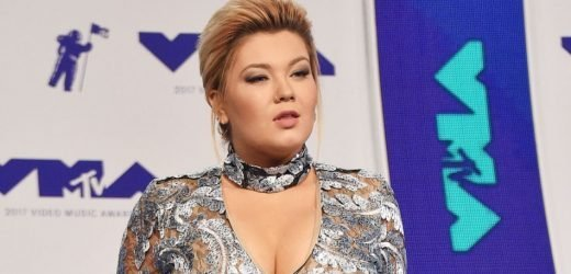 'Teen Mom OG' Amber Portwood Reportedly Slams David Eason As A 'Clown' On Twitter