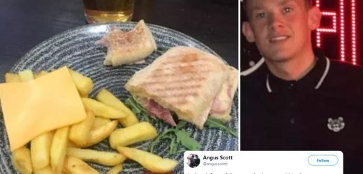 Lad slams Wetherspoons after ordering cheesy chips and getting a single SLICE – but is it real?