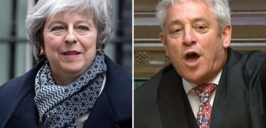 Theresa May brands John Bercow's behaviour 'appalling' and a 'constitutional outrage' after siding with pro-EU MPs