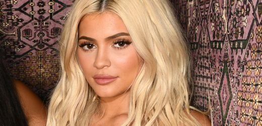 Kylie Jenner's Record for Most-Liked Instagram Post Ever Gets Beaten by an Egg!