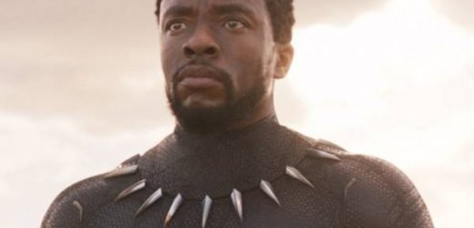 How Black Panther Became 2018's Most Revolutionary Film
