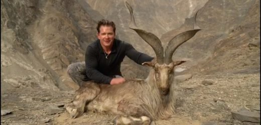 Hunter beams next to corpse of rare screw-horn goat he paid £85k to kill