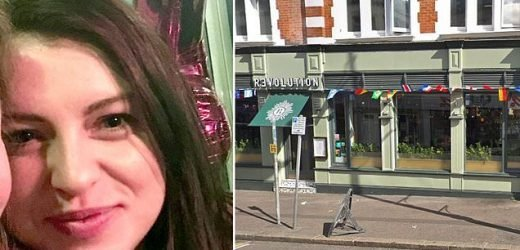 Fears grow for missing woman, 25, who was last seen 'really drunk'