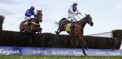 Saturday's Ascot Chase betting preview: Latest runners, riders, odds and trainer quotes for the final field