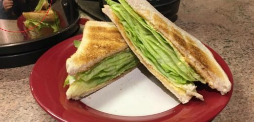 Foodie shares photo of his 'lettuce toastie' on Facebook and gets ripped to shreds