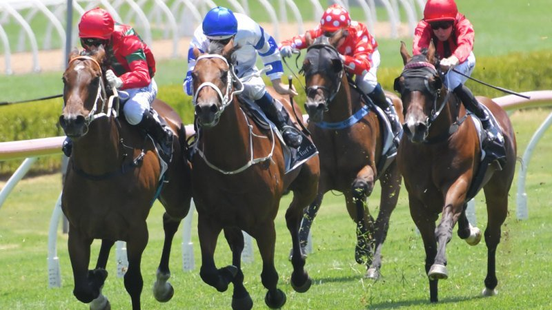 Race-by-race tips and preview for Randwick Kensington on Wednesday
