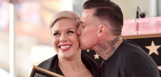 "Pink Slashed Her Husband's Tires on Thanksgiving Because ""The Holidays Are Stressful"""