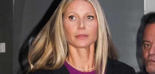 Fighting Back! Gwyneth Paltrow Claims Alleged 'Hit & Run' Skier 'Plowed' Into Her