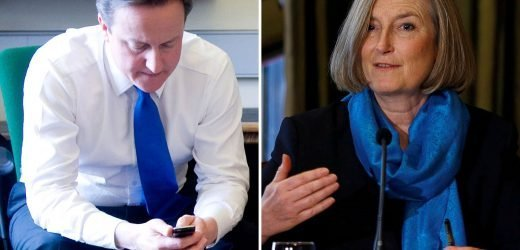 David Cameron text Tory defector Sarah Wollaston to rethink her decision to leave the party and join the Independent Group