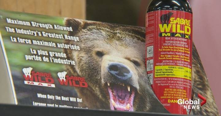 Arrest made in November 2018 bear spray attack in Peterborough