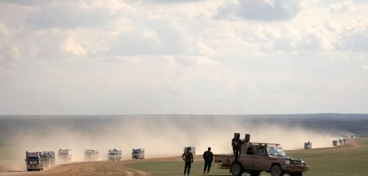 'Slow and methodical' progress in Islamic State Syria pocket: coalition