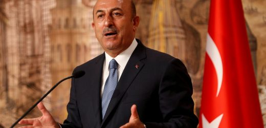 Turkey says EU hypocritical for attending Egypt summit after executions