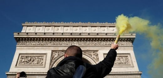 French 'yellow vests' marching for everyone, protester says as support falls
