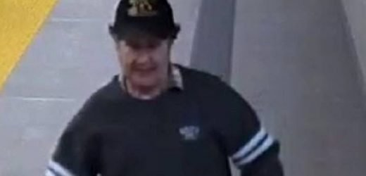 Transit police search for suspect after alleged SkyTrain groping of young girl