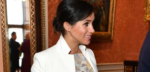 Meghan voices concern about American food production during party for Charles