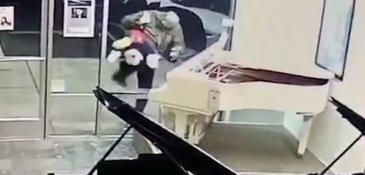Mickey Mouse job! Thief steals toy from store full of expensive pianos