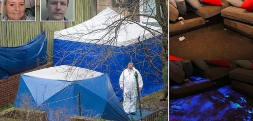 Body parts found ARE those of mother-of-four who was hacked to death