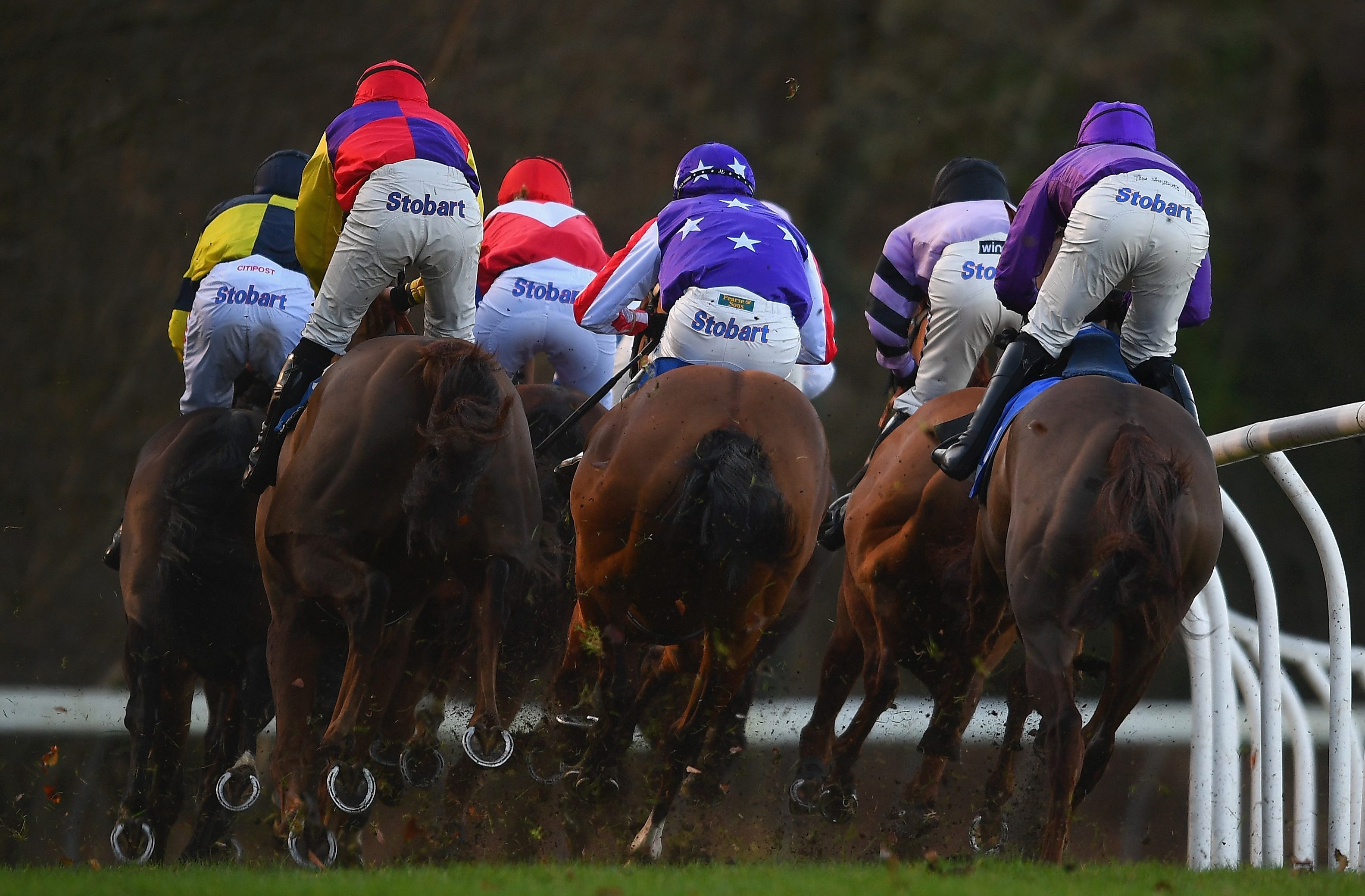 Midlands National betting preview: Latest runners, riders, odds and trainer quotes for the final field