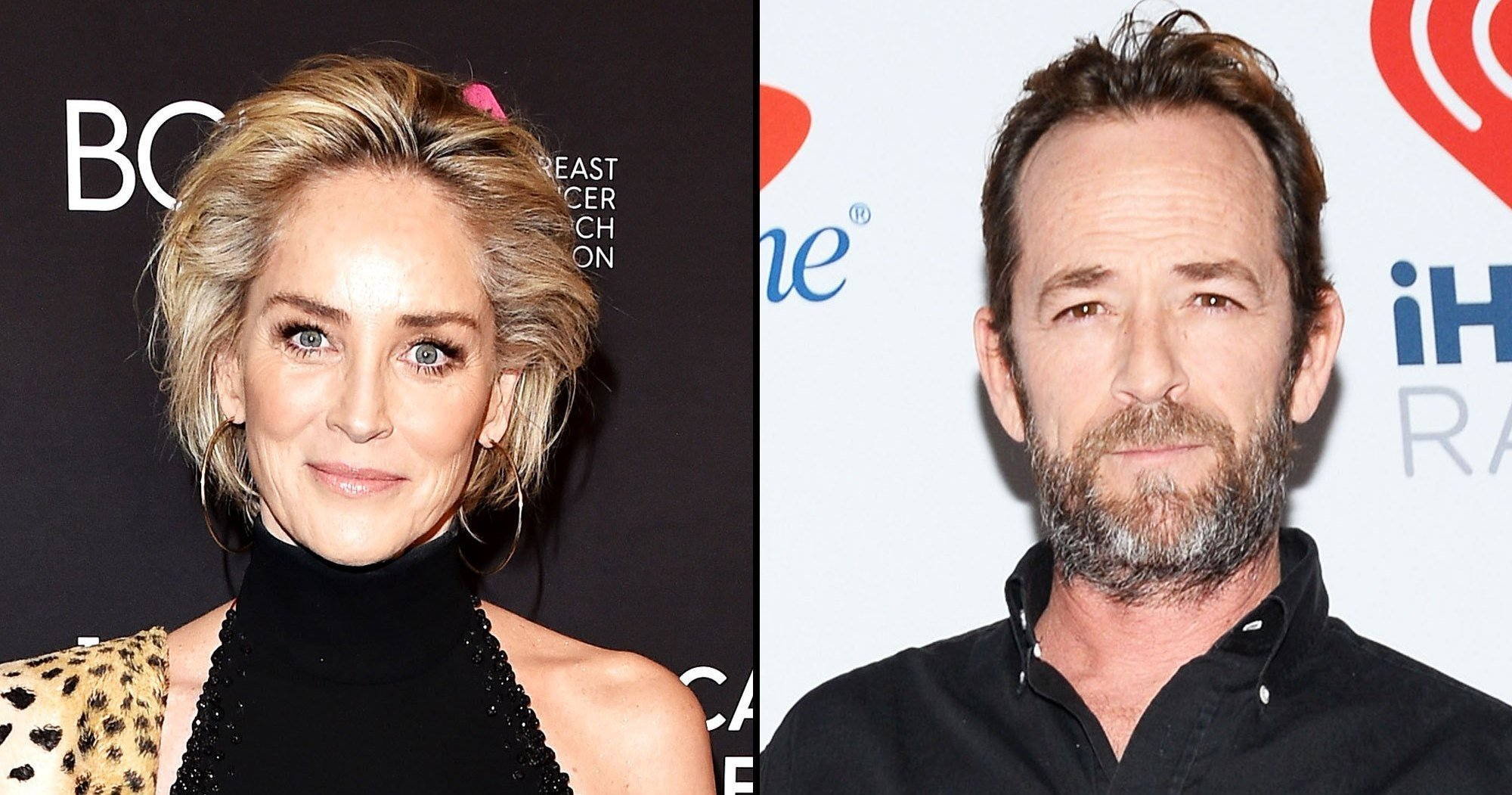 Sharon Stone Supports Luke Perry 17 Years After Her Stroke