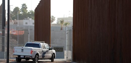 Immigrant with criminal record assaults Border Patrol agent with lawnmower blade: officials
