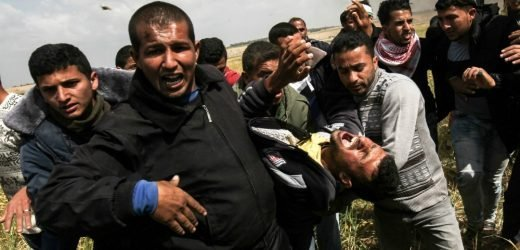 Video shows Palestinian shot dead with back to Israeli snipers