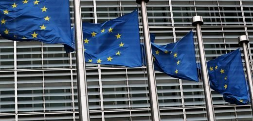 EU pros and cons of delaying Brexit beyond March 29