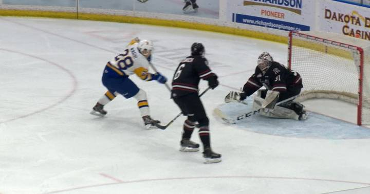 Saskatoon Blades blank Red Deer Rebels in goaltenders duel