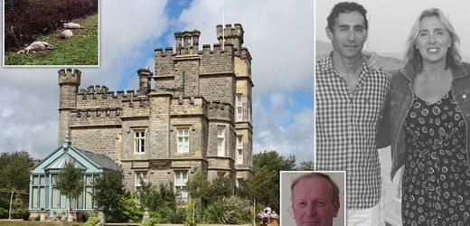 Farmer shoots millionaire hedge fund manager's two dogs dead