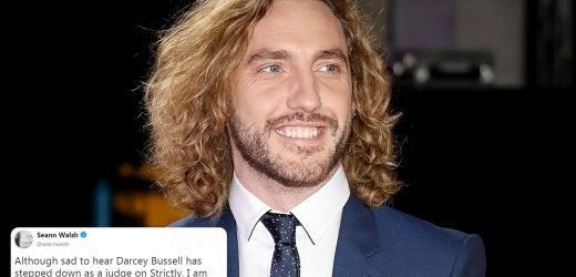 Seann Walsh jokes he's the new Strictly Come Dancing judge after getting close to show boss