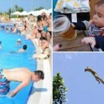 These perfectly timed photos captured the split second before disaster