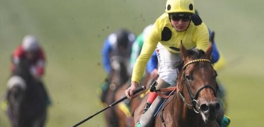 Racing Report Card: One for your tracker, a horse on the up for Roger Varian and a mighty gamble landed at Newmarket on Wednesday