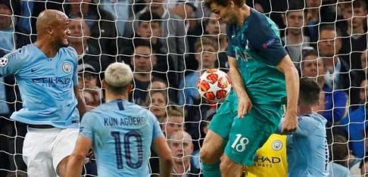 Rio Ferdinand and ex-ref Halsey say Llorente goal should NOT have stood after controversial 'handball' winner for Spurs against Man City