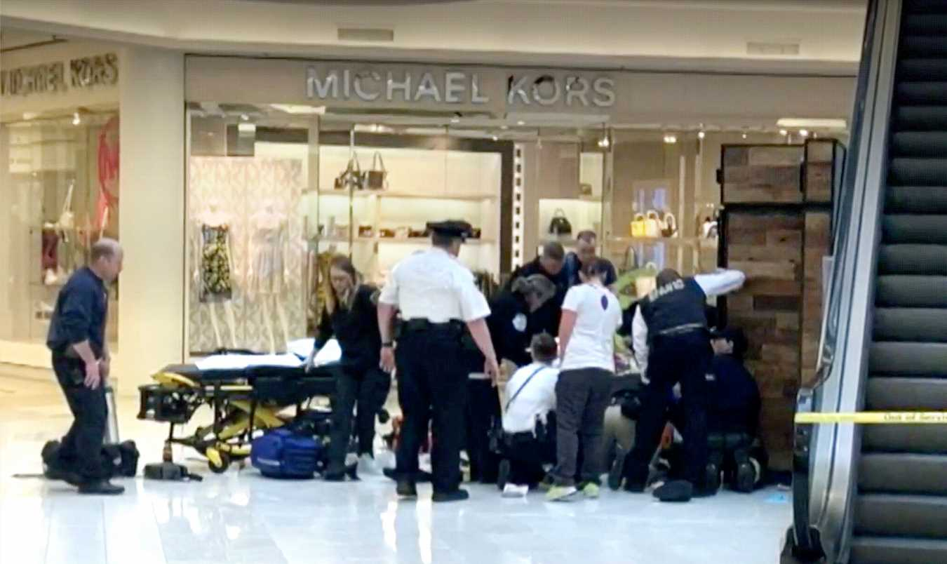 Hero Bystander Helped Apprehend Suspect Accused of Throwing 5-Year-Old Off Mall of America Balcony