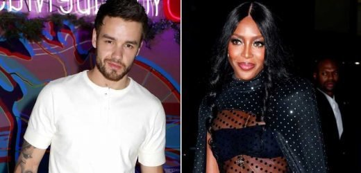 Hot Hookup! Liam Payne Got Cozy With Mystery Girl After Naomi Campbell Split