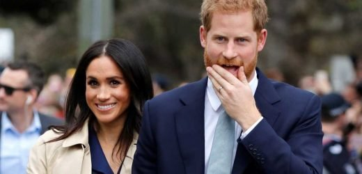Meghan Markle and Prince Harry Are Reportedly Already Making Travel Plans for Their New Baby